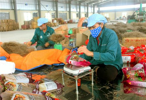 Thai Nguyen has 2 national OCOP products rated at five stars